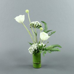 Bambou M - Coquelicot blanc