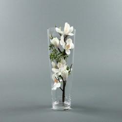 Conic L - Magnolia blanc (78854)