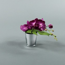 Pot silver - Orchidée fushia (77994)