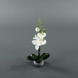 Boule silver S - Orchidée blanc (68343)