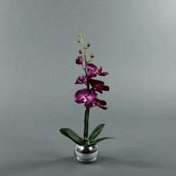 Boule silver S - Orchidée fushia (74153)