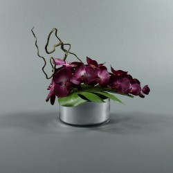 Round silver - Orchidée fushia (76584)