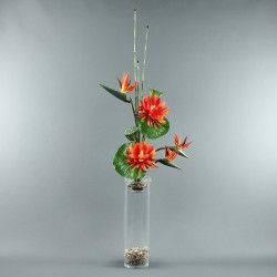 Exotic Aqua XL - Bird of paradise, Lotus Orange, pod 106cm