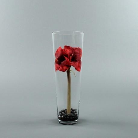 Conic L - Amaryllis rouge