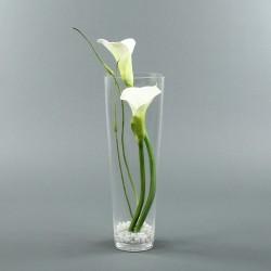 Conic L - Arum blanc x2