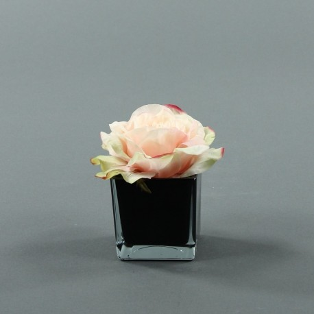 Cube S black - Rose Duchesse Rose