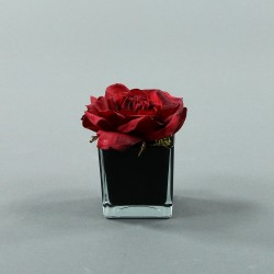 Cube S black - Rose Duchesse Rouge Noël