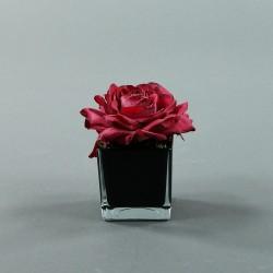 Cube S black - Rose Duchesse Fushia 14cm