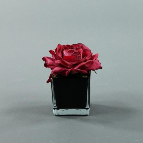 Cube S black - Rose Duchesse Rouge Fushia
