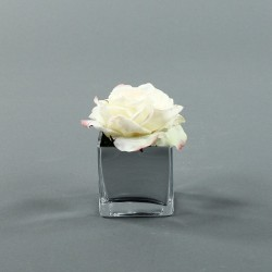 Cube S Silver - Rose Duchesse Champagne