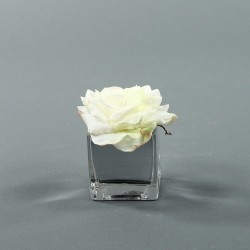 Cube S silver - Rose Duchesse Blanc