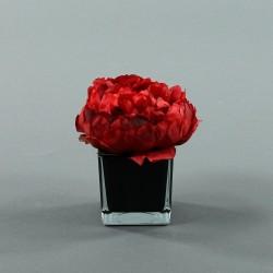 Cube S black - Pivoine Rouge Noël