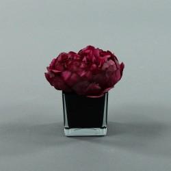 Cube S black - Pivoine Fushia