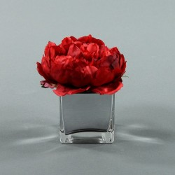 Cube S silver - Pivoine Rouge Noel