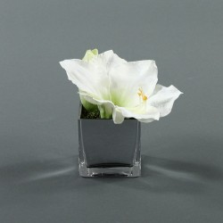 Cube S silver - Amaryllis Blanc