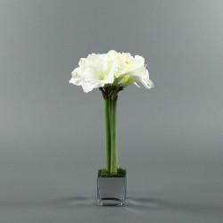 Cube M silver - Amaryllis blanc