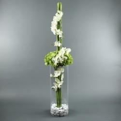 Cylindric L - Hortensia vert, Phalaenopsys blanc, bambou