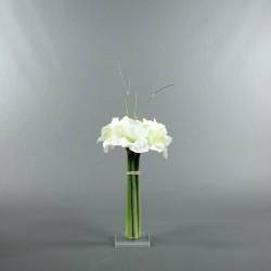 Socle Plexi M – Amaryllis blanc