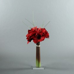 Socle Plexi M – Amaryllis rouge