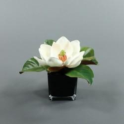 Cube L black - Magnolia blanc