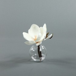 Boule S - Magnolia blanc