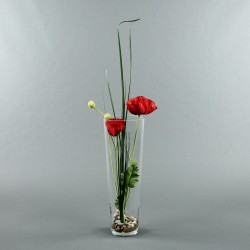 Conic L - Coquelicot rouge, Herbes