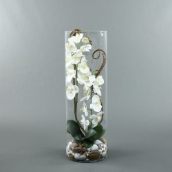 Cylindric XL - Orchidée blanc