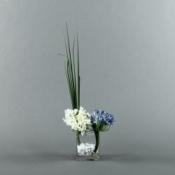 Cube Clear M - Agapanthe bleu blanc