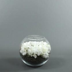 Boule XXL - Hortensia Blanc