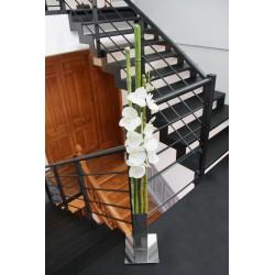 Chrome XL - Bambous vert - Orchidée blanc