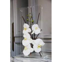 Para GM étroit - Orchidée blanche/Tuteurs