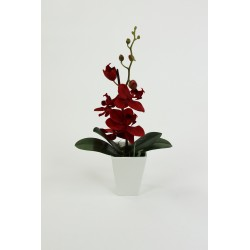 Porcelain Conical - Orchidée Rouge 30cm