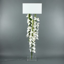 Flat XL - Orchidée blanc, Bambou vert