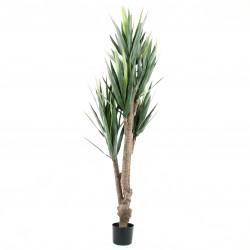 Arbre Yucca Rostrara 137cm - 161 feuilles