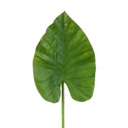 Feuille d'Alocasia 84cm - Vert