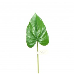 Feuille d'Anthurium 36cm - Vert