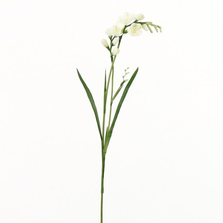 Freesia (double) 71cm - Blanc