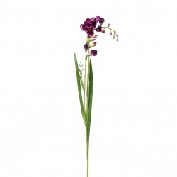 Freesia (double) 71cm - Fushia