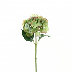 Hortensia 51cm - Vert Pourpre