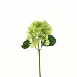 Hortensia 51cm - Vert