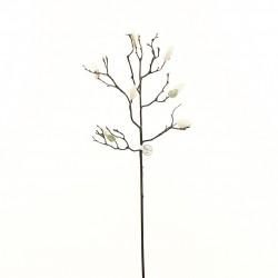 Magnolia branche de boutons 86cm - Champagne