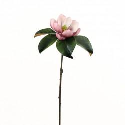 Magnolia Fashion 61 cm - Fushia