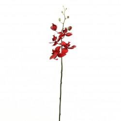 Orchidée Phalaenopsis 74cm - Rouge