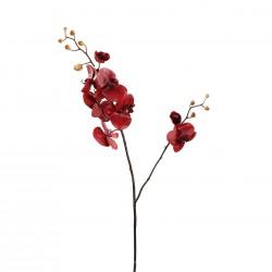 Orchidée Phalaenopsis double 99cm - Rouge
