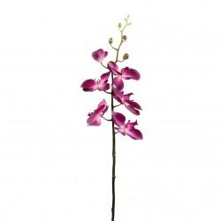 Orchidée Phalaenopsis double 88cm - Fushia