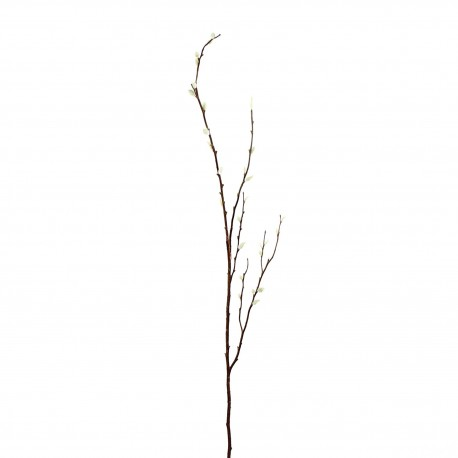 Tige de saule blanc 133cm - Marron Blanc