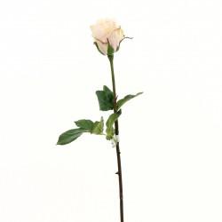 Rose Duchesse bouton tige courte 52cm - Rose