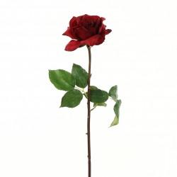 Rose Duchesse ouverte tige courte 51cm - Rouge Noël