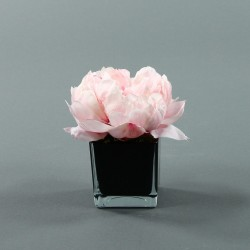 Cube S black - Pivoine Rose