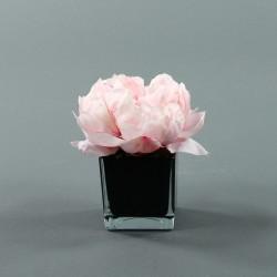 Cube S black - Pivoine Rose